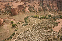 View of the canyon floor. Canyon del Muerto, Arizona. - Photo #18382