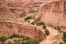 Walls of Canyon del Muerto. Canyon de Chelly, Arizona. - Photo #18358