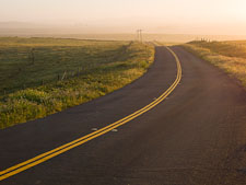 Curving road in the early morning mist. Point Reyes, California. - Photo #25702