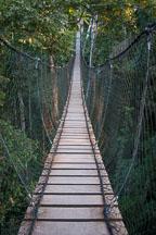 Jungle canopy bridge. Amazon, Peru - Photo #8902
