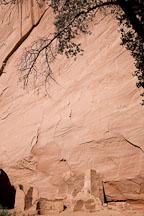 Anasazi ruin. Antelope House, Canyon de Chelly NM, Arizona. - Photo #18120