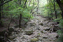 A dry riverbed cuts a path through Gyeryongsan National Park in Chungcheongnam-do, South Korea. - Photo #20720