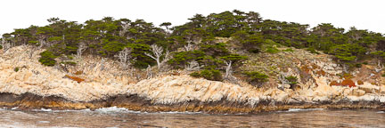 Panorama of the coastal bluffs at Point Lobos. - Photo #27020