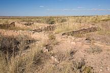 Puerco Pueblo ruins. Petrified Forest NP, Arizona. - Photo #18020