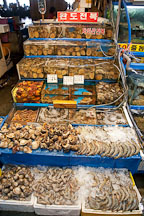 Shellfish and mollusks at the Noryangjin fish market in Seoul. - Photo #21206