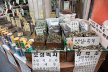 This Seoul store sells many different kinds of herbs. Dongdaemun market, Seoul, South Korea. - Photo #21360
