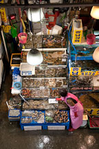 A vendor updates the signage at her stall in the Noryangjin Fish Market in Seoul. - Photo #21202