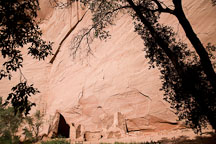 Antelope house viewed from the canyon floor. Canyon de Chelly NM, Arizona. - Photo #18123