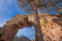 Royal Arch in Boulder's Chatauqua Park. Boulder, Colorado. - Photo #33123