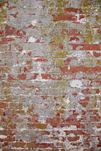Old wall at Alcatraz. - Photo #22145