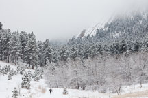 Man running in winter in Chautauqua Park. Boulder, Colorado. - Photo #33124