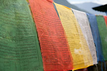 Prayer flags hanging across the trail to the Cheri Monastery. Thimphu Valley, Bhutan. - Photo #23101
