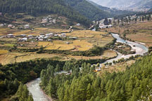 Wang chhu river and rice fields in Thimphu valley, Bhutan. - Photo #23048