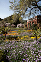 Grounds of the Filoli Gardens. - Photo #24556