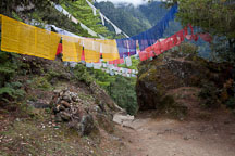 Prayer flags on the trail to Taktshang. - Photo #24267