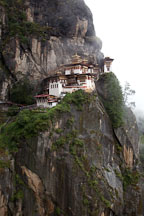 Tiger's nest monastery is perched on a cliff wall. Paro Valley, Bhutan. - Photo #24111