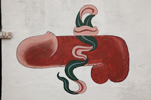 Painting of a penis located on a farmhouse wall. - Photo #23926