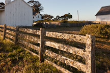Lichen coated fence at Pierce Point Ranch. Point Reyes, California. - Photo #25495