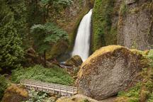 Wahclella Falls. Columbia River Gorge, Oregon. - Photo #28327