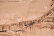 Pictograph at Antelope House. Canyon de Chelly NM, Arizona. - Photo #18128