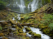 Lower Proxy Falls, Three Sisters Wilderness, Willamette National Forest, Oregon. - Photo #27924