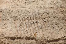 Zoomorphic petroglyph. Petroglyph Point, California. - Photo #27237