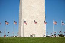 American flags surrounding the Washington Monument. Washington, D.C. - Photo #28983