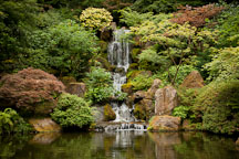 Waterfall at the Portland Japanese Garden. - Photo #28183