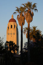 Hoover Tower and palm trees at sunset, Stanford, California. - Photo #1358