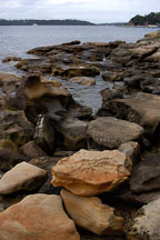 Rocky shore near Mrs. Macquaries point. Sydney, Australia. - Photo #1638