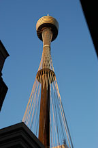 Sydney tower (AMP tower), late afternoon. Sydney, Australia. - Photo #1409