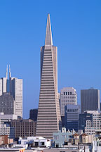 The Transamerica pyramid and the San Francisco skyline. San Francisco, California, USA. - Photo #1167