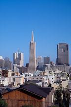 The Transamerica pyramid and the San Francisco skyline. San Francisco, California, USA. - Photo #1168