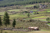 Fields and farmhouses in Phobjikha Valley, Bhutan. - Photo #23730