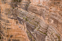 Rock layers on the South Rim (Kaibab Limestone). Grand Canyon NP, Arizona. - Photo #17231
