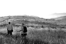 Couple hiking at Russian Ridge Open Space Preserve. California, USA. - Photo #4333