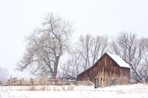 Doran Barn in winter. Boulder, Colorado. - Photo #33133