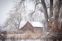 Doran Barn on South Boulder Creek Trail. Boulder, Colorado. - Photo #33134