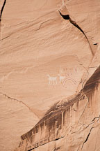 Rainbow and antelope pictographs. Antelope House Ruin, Canyon de Chelly NM, Arizona. - Photo #18134