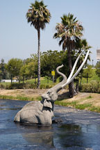 Trapped Mastodon. La Brea tar pits. Los Angeles, California, USA. - Photo #6634