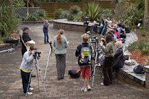 Photography class in the Royal Botanical Gardens, Sydney, Australia. - Photo #1435