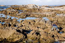 Photographer taking pictures of tidepools. Pacific Grove, California. - Photo #19536