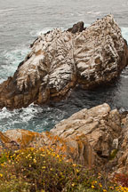 Coastal bluff and small island at Point Lobos. - Photo #26937