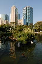 Bird lake in Kowloon Park. Hong Kong, China. - Photo #14738