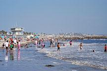 Venice beach, California, USA. - Photo #7438