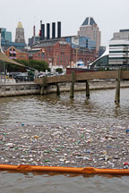 Floating garbage on the water. Baltimore, Maryland, USA. - Photo #3939