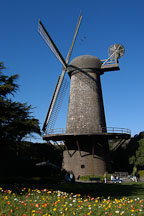 Dutch Windmill and flowers. Golden Gate Park, San Francisco, California, USA. - Photo #2675