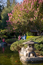 Japanese Friendship Garden. San Jose, California - Photo #16940