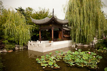 Lan Su Chinese Garden. Portland, Oregon. - Photo #28141