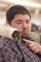 A volunteer plays with a pet rat. The Wonderful World of Rats, San Mateo, California, USA. - Photo #6041